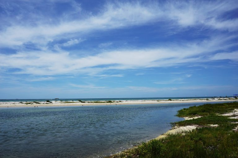 Just one of the undeveloped beaches at Fort De Soto