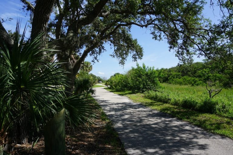 Bicycle trail at Fort De Soto