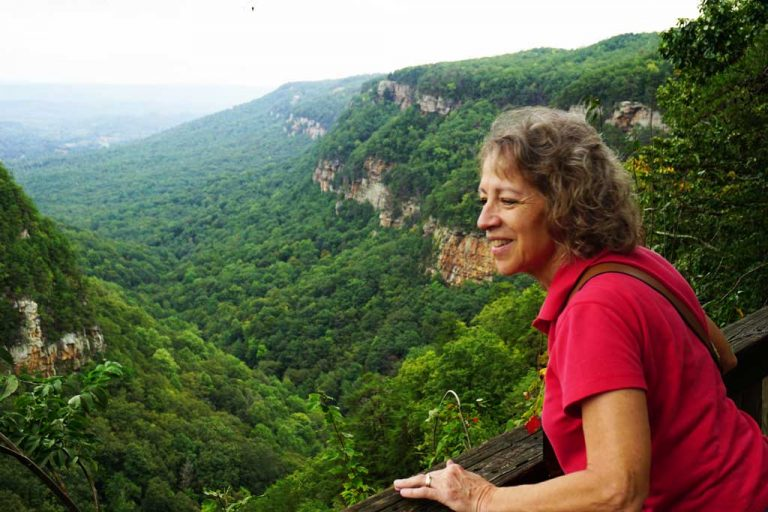 A view of the adjacent mountain ridges from Cloudland State Park in Northwest Georgia
