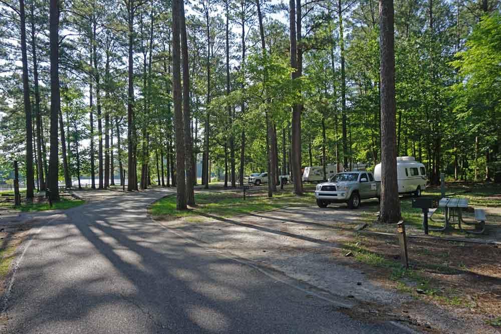 Twiltley Branch Campground in Mississippi